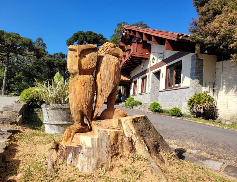 Escultor cria obra em tronco de árvore no Lago Joaquina Rita Bier