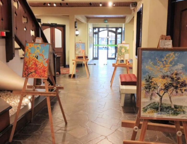 Secretaria da Cultura promove exposições na Várzea Grande e na Câmara de Vereadores